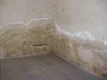Feuchte Wände? - Fenselau Bautenschutz